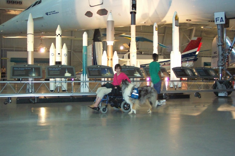 rough collie service dog in air and space museum